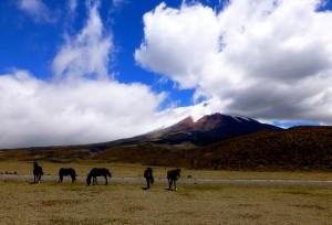 Cotopaxi Volcano: It's Active!