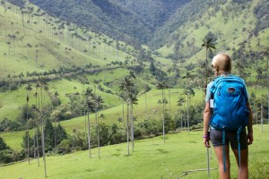 Breathtaking Valle de Cocora