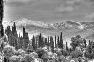 Polaroid Siesta Hostel Review (Granada)